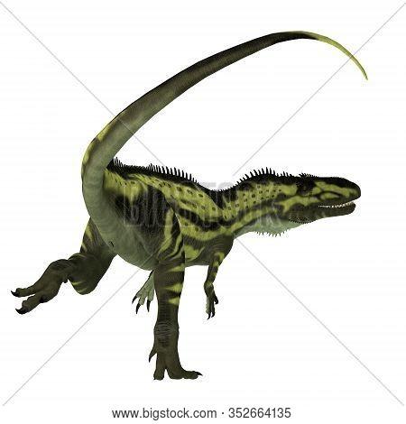 Torvosaurus Dinosaur Tail 3d Illustration - Torvosaurus Was A Carnivorous Theropod Dinosaur That Liv