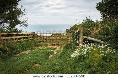 Green Fields On A Hill With The Sea English Channel And English Countryside In The Background. Golde