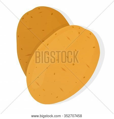 Two Potatoes Isolated On White Background. Unpeeled Potatoes Tuber. Vector Illustration.