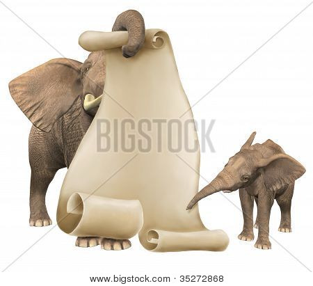 Elephants Pointing at Scroll