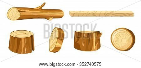Wood Log And Tree Stump Round Cut With Rings Set