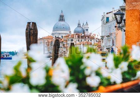 Canal Grande With Venice Gondola And Basilica Di Santa Maria Della Salute In Venice, Italy. Spring D