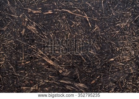Rough Wooden Texture. Abstract Background. Osb Texture. Chipboard Material.