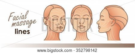 Massage Facial Lines. Beauty Treatment, Skin Care, Massage Lines. Vector Illustration