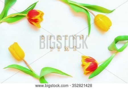 Spring tulip flowers on wooden backdrop with inscription Spring time, spring holiday postcard. Spring flower background with spring tulip flowers