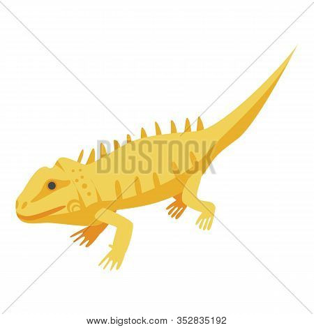 Yellow Skin Lizard Icon. Isometric Of Yellow Skin Lizard Vector Icon For Web Design Isolated On Whit