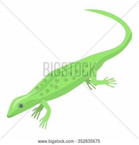 Magic Green Lizard Icon. Isometric Of Magic Green Lizard Vector Icon For Web Design Isolated On Whit