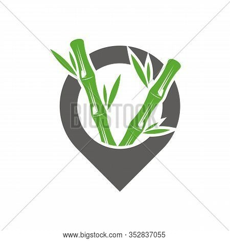 Point Bamboo Logo Template. Green Bamboo Trees Vector Design. Bamboo Stem Logotype