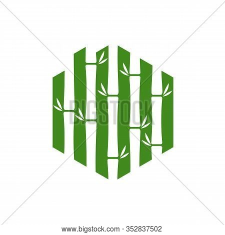 Home Bamboo Logo Template. Green Bamboo Trees Vector Design. Bamboo Stem Logotype