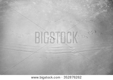 Traces Of Tourists And Sledding On Snowshoes.
