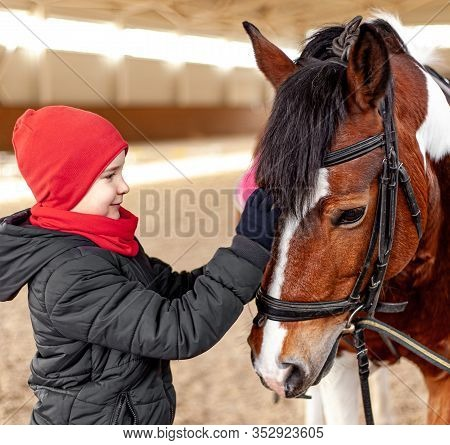 Boy Stroking Horse, Young Jockey, Horseback Training On Manege, Lesson For Young Jockey In Equestria