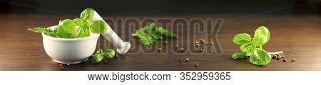 Fresh Basil In Mortar, Green Garden Herb On Dark Background