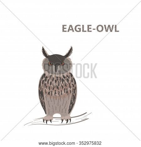 Vector Illustration, A Cartoon Cute Brown Eagle Owl With Unwinking Stare Sitting On A Branch. Isolat