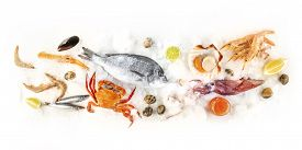Fish And Seafood Variety, A Flat Lay Overhead Panorama On A White Background. Sea Bream, Shrimps, Pr