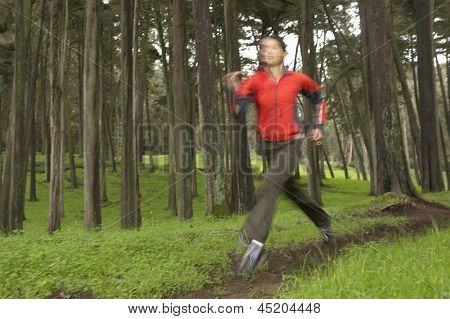 Blurred image of woman jogging in forest