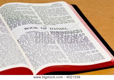 Bible Page - Daniel