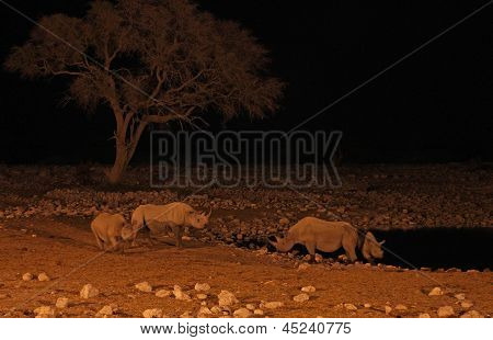 Okaukuejo waterhole in Etosha National Park, Namibia