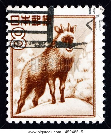 Postage Stamp Japan 1952 Japanese Serow, Goat-antelope