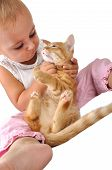 adorable beautiful cute toddler child plays with a cat poster