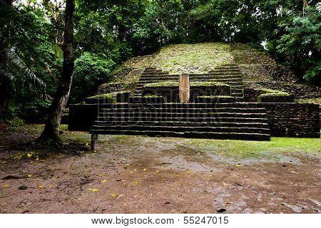 Stela Temple In Lamanai