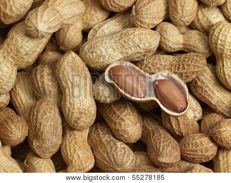 Peanuts