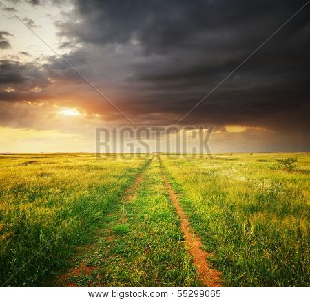 Green meadow and road lane. Composition of nature.