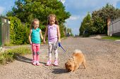 Two Little girls walking with small dog on a leash outdoor poster