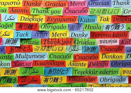 Thank You Word Cloud printed on colorful paper poster
