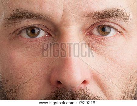 Mature Caucasian Man, Closeup On Face