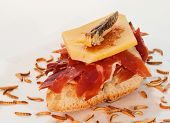 Serrano ham on toast with cheese and cricket. poster