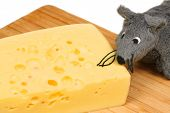 Grey plush mouse eating cheese on wooden board poster