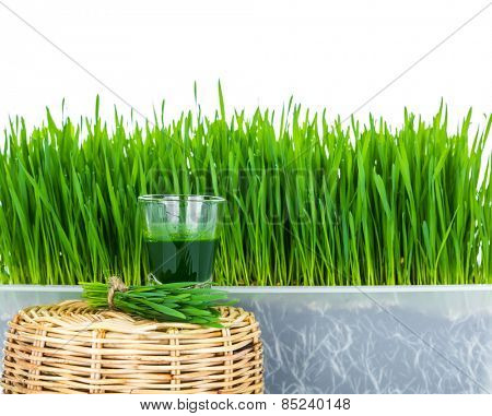 Shot glass of wheat grass with fresh cut wheat grass and wheat grains
