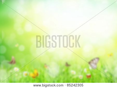 Abstract green blur background of spring meadow with butterflies