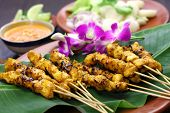 chicken satay, sate ayam and lontong with peanut sauce, indonesian skewer food poster