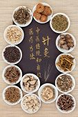 Acupuncture needles and chinese herbal medicine selection with calligraphy script. Translation reads as acupuncture chinese medicine is a traditional and effective medical solution. poster