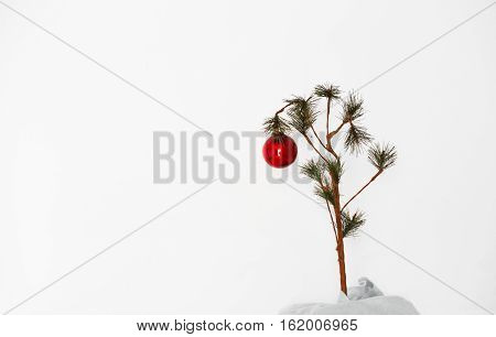 One red Christmas ball hanging from a small Charlie Brown Christmas tree