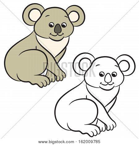 Koala bear vector illustration. Coloring book. Vector illustration