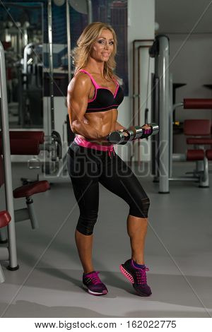 Fitness Woman Doing Exercise For Biceps With Dumbbells