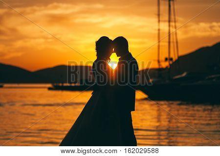 Honeymoon Wedding Couple Travel Silhoutte