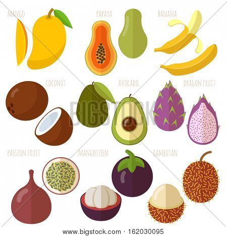 Exotic tropical Vector flat design fruits and berries icon set