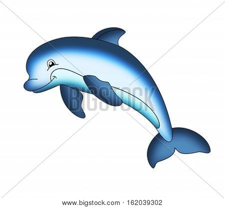 dolphin fins tail a fish picture blue mammals