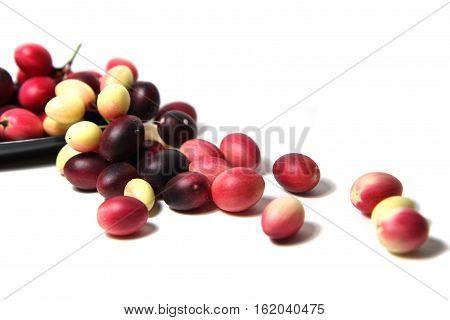 Karonda or Carunda Fruits(Carissa carandas L.) on white background