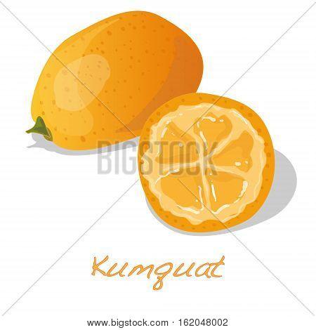 ripe kumquat fruits isolated on white background