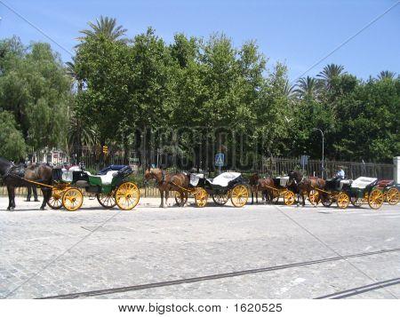 Malaga City From The Gibralfaro Castle