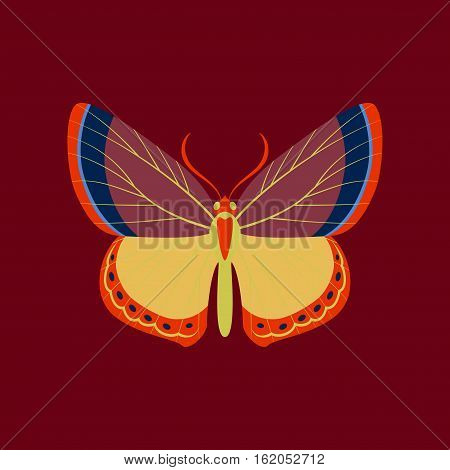 Colorful flat icon of butterfly isolated on red
