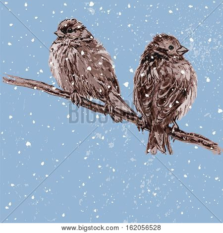 Vector illustration two furry sparrows perching on a tree branch