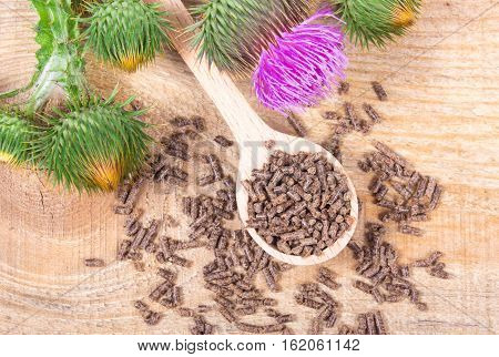 Dietary supplement - granular and fresh thistle with flowers (Silybum marianum Scotch Thistle Marian thistle ) on wooden table.