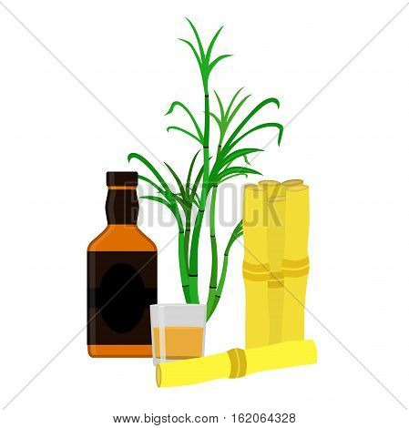 Rum bottle sugar cane glass shot. Flat vector style Organic drink