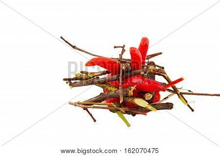 Красные перцы чили имитируют горящий жаркий огонь.