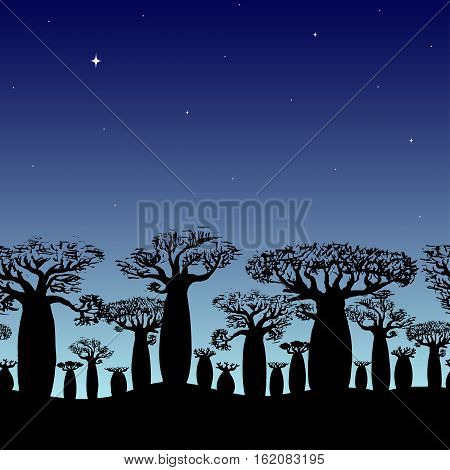 seamless decorative border of baobabs silhouette on night sky with star